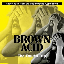 V/A, brown acid: fourth trip cover
