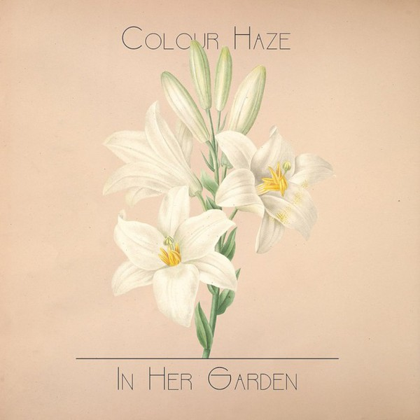 Cover COLOUR HAZE, in her garden