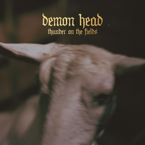Cover DEMON HEAD, thunder on the fields