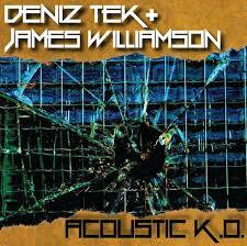 DENIZ TEK & JAMES WILLIAMSON, acoustic k.o. cover