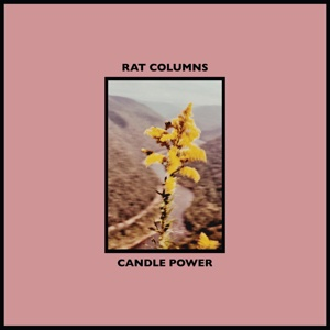 Cover RAT COLUMNS, candle power