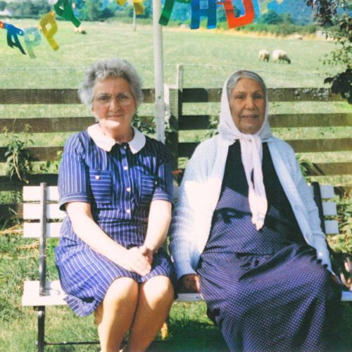 DAUWD, theory of colours cover