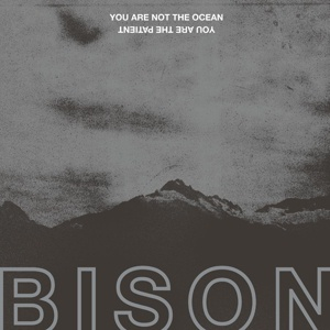 Cover BISON, you are not the ocean you are the p