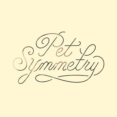 PET SYMMETRY, vision cover