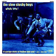 SLOW SLUSHY BOYS, whelk time! cover