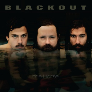 BLACKOUT, the horse cover