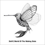 STEFFI, world of the waking state cover