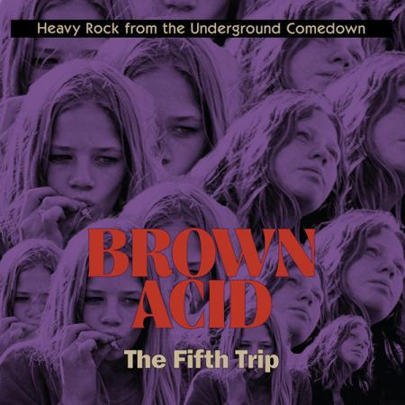 V/A, brown acid: the fifth trip cover