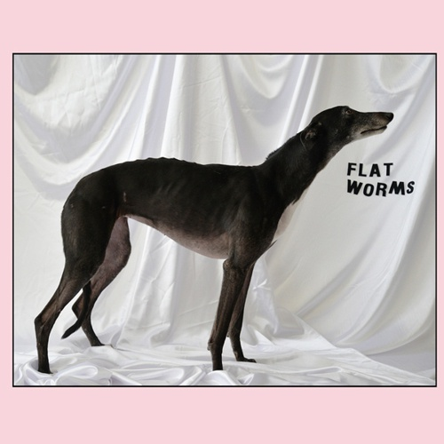 Cover FLAT WORMS, s/t