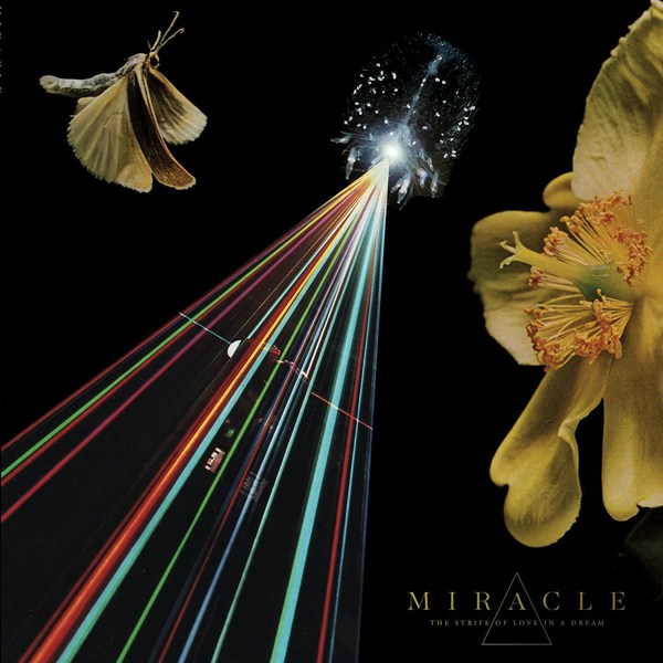 MIRACLE, the strife of love in a dream cover