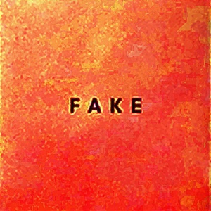 DIE NERVEN, fake cover