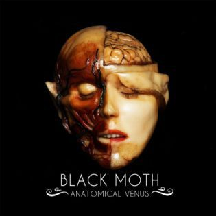 BLACK MOTH, anatomical venus cover