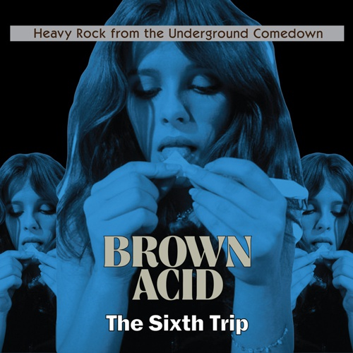 V/A, brown acid: the sixth trip cover