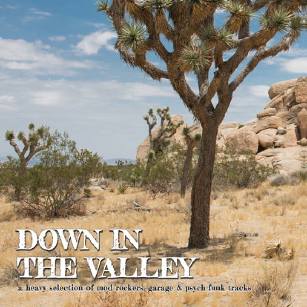 V/A, down in the valley vol. 1 cover
