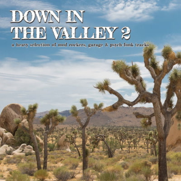 V/A, down in the valley vol. 2 cover