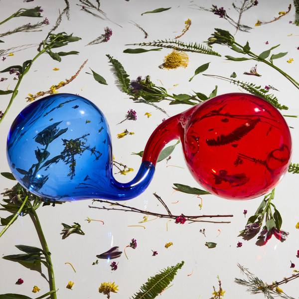 DIRTY PROJECTORS, lamp it prose cover