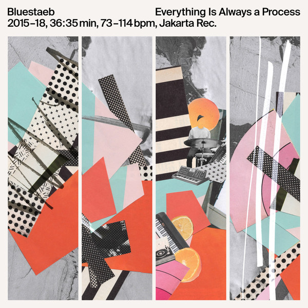 Cover BLUESTAEB, everything is always a process