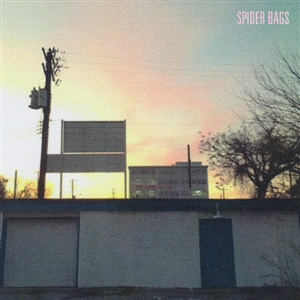 SPIDER BAGS, someday everything will be fine cover