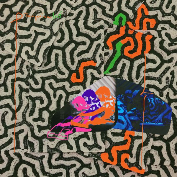 Cover ANIMAL COLLECTIVE, tangerine reef