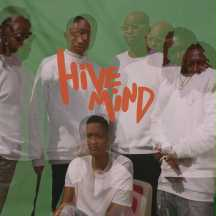 THE INTERNET, hive mind cover