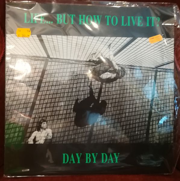 LIFE BUT HOW TO LIFE IT?, day by day (USED) cover