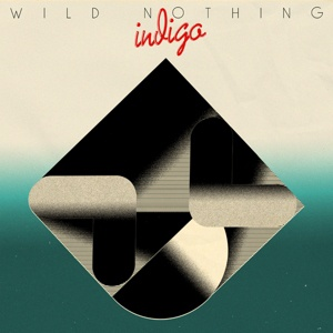 WILD NOTHING, indigo cover