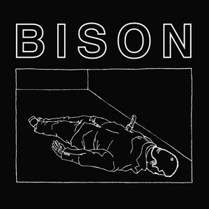 Cover BISON, 1000 needles