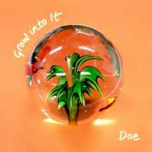 DOE, grow into it cover