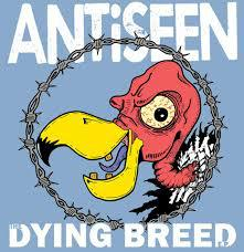 ANTISEEN, the dying breed cover
