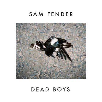 SAM FENDER, dead boys cover