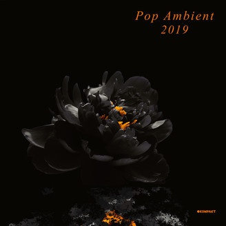 V/A, pop ambient 2019 cover