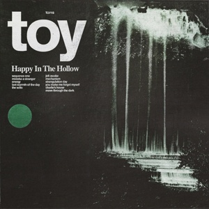 TOY, happy in the hollow cover