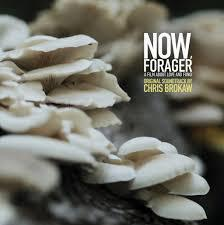 Cover CHRIS BROKAW, now, forager (ost)