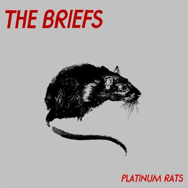 Cover BRIEFS, platinum rats