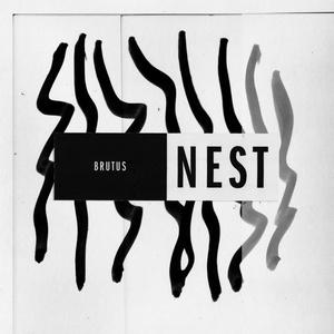 BRUTUS, nest cover