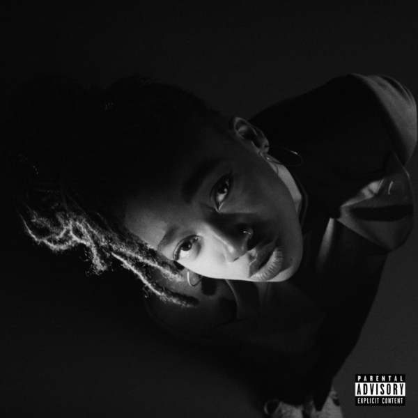 LITTLE SIMZ, grey area cover