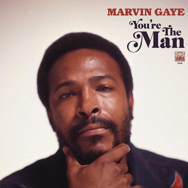 Cover MARVIN GAYE, you´re the man