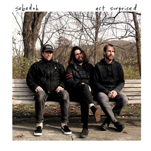 SEBADOH, act surprised cover