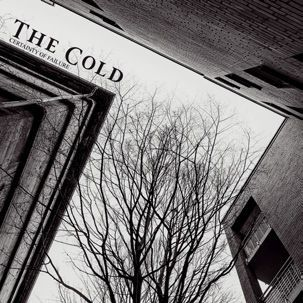 THE COLD, certainty of failure cover