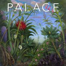 PALACE, life after cover