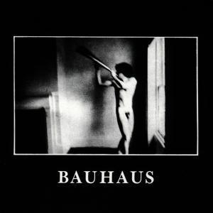 BAUHAUS, in the flat field cover