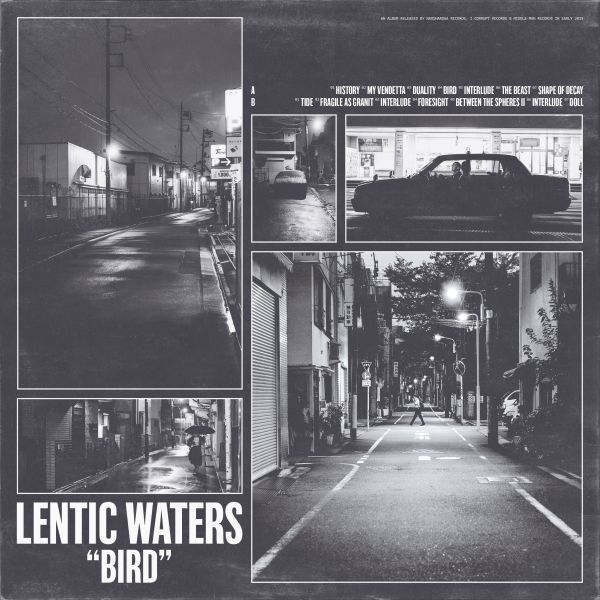 Cover LENTIC WATERS, bird