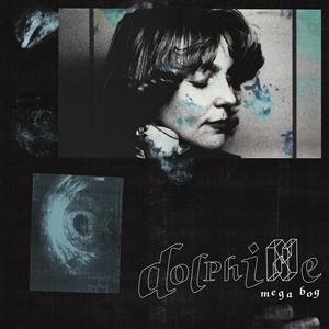 MEGA BOG, dolphine cover