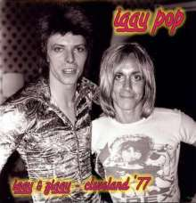 IGGY POP, iggy & ziggy cover