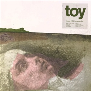 TOY, songs of consumption cover