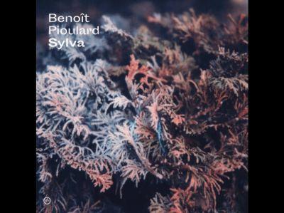BENOIT PIOULARD, sylva cover