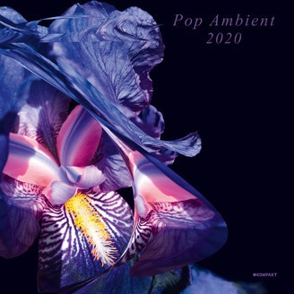 V/A, pop ambient 2020 cover