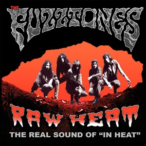 FUZZTONES, raw heat cover