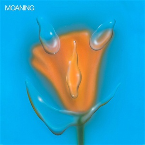 MOANING, uneasy laughter cover