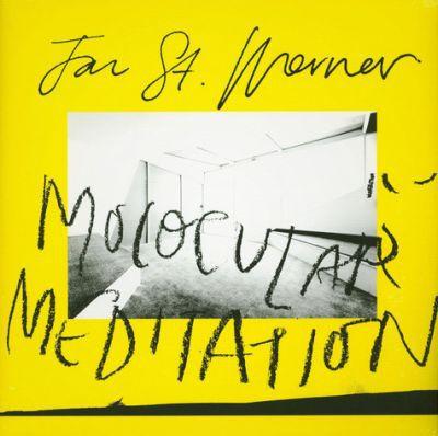 JAN ST. WERNER, molocular meditation cover